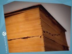 malaya enciklopediya treidera
